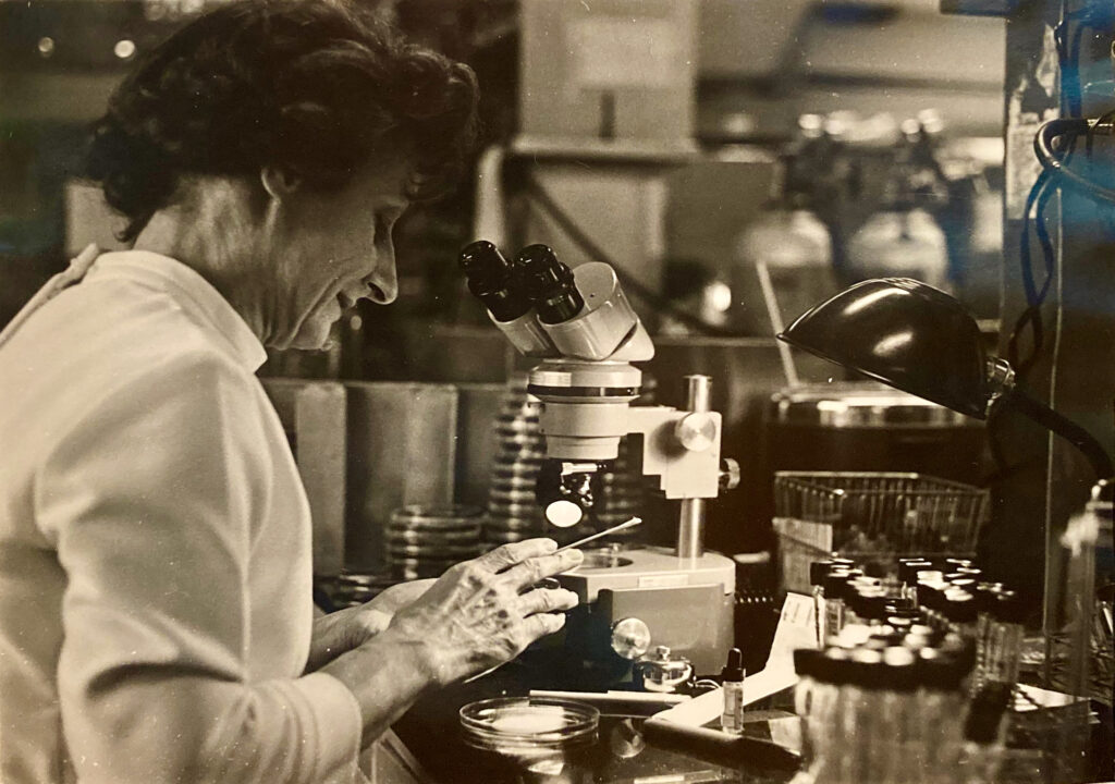Pauline Gourlay working in her lab